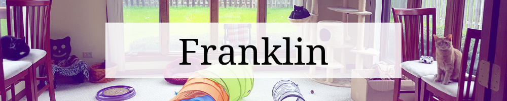"""Header graphic that says """"Franklin"""" over an image of the cats in the cat room."""
